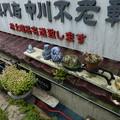 Photos: 石段辺り