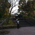 Photos: しいの木山展望台