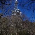 宝篋山頂上(標高460.7m)