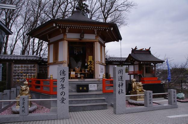 Photos: 西山美術館