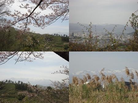花見川公園眺望