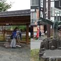 写真: 城之崎温泉