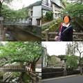 写真: 城之崎温泉街並み