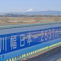 写真: 日本一
