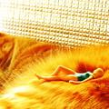 写真: モフモフ日焼けサロン