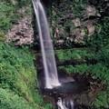 写真: 透文紗の滝