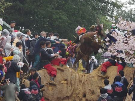 IMGP9652 猪名部神社の上げ馬神事その9