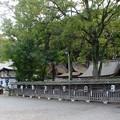 写真: 闘鶏神社01