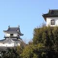 Photos: 掛川城01