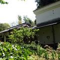 森野旧薬園11