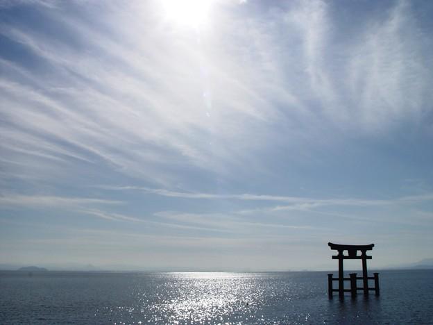 写真: 白鬚神社15