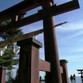 写真: 鳥居の中の鳥居:白鬚神社20