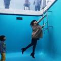 写真: 水面に脱出:スイミング・プール05