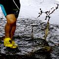 写真: 泥遊び。