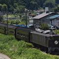 写真: 旧型客車かもしか号