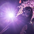 Photos: 夜桜狐