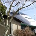 ご近所で新幹線