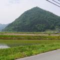Photos: 山の田んぼ