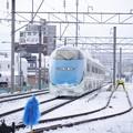 Photos: 0228005