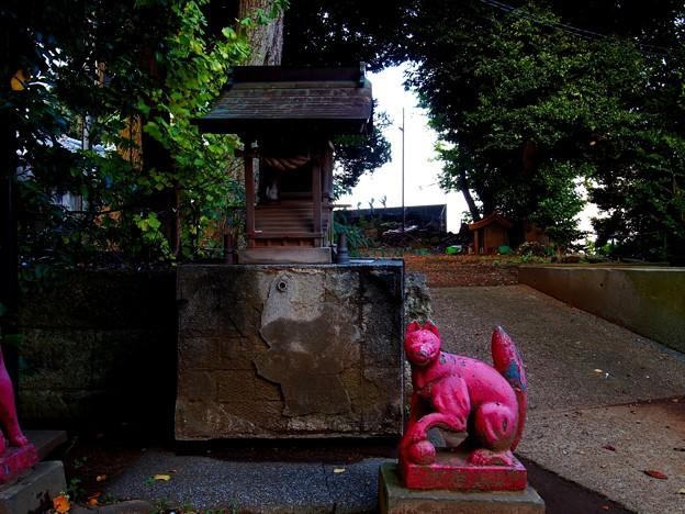 赤羽八幡神社 赤いきつね