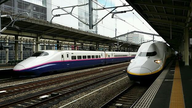上越新幹線 E2系 たにがわ 東京行き & E4系 Maxたにがわ 越後湯沢行き