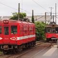 写真: P6069641