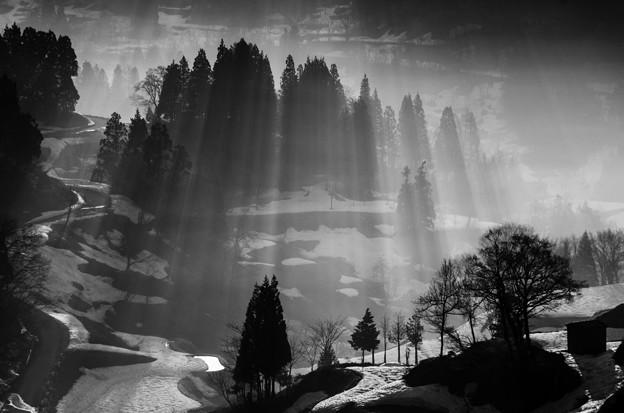 光芒「蒲生の棚田」