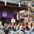 宮入「三社祭」
