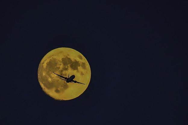 写真: 赤い月に飛行機2