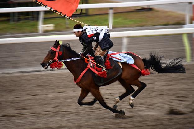 相馬野馬追・甲冑競馬 (2)