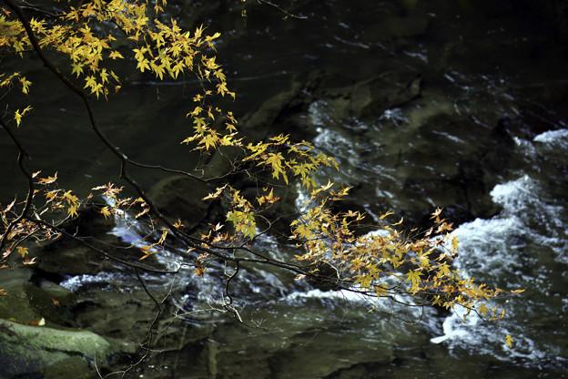 粟又の滝3