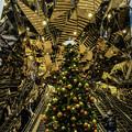 写真: メリークリスマス
