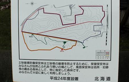 室蘭・入江運動公園にて (2)