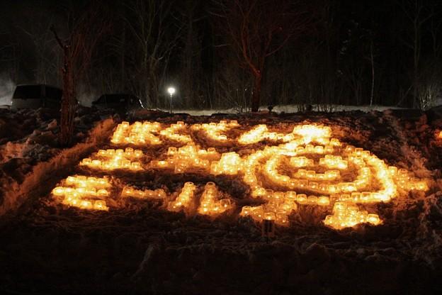 雪原に燈るランタン (7)