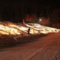 Photos: 雪原に燈るランタン (8)