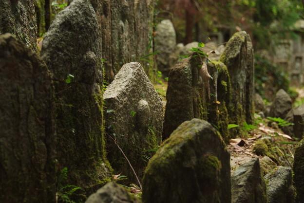 石仏の里 当尾 大門石仏群1