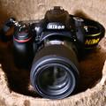 Photos: TAMRON SP 90mm F/2.8 Di MACRO 1:1 VC USD(Model F017)
