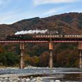 写真: 親鼻鉄橋を走るSL