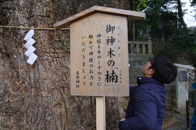五社神社のパワースポット