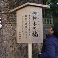 写真: 五社神社のパワースポット
