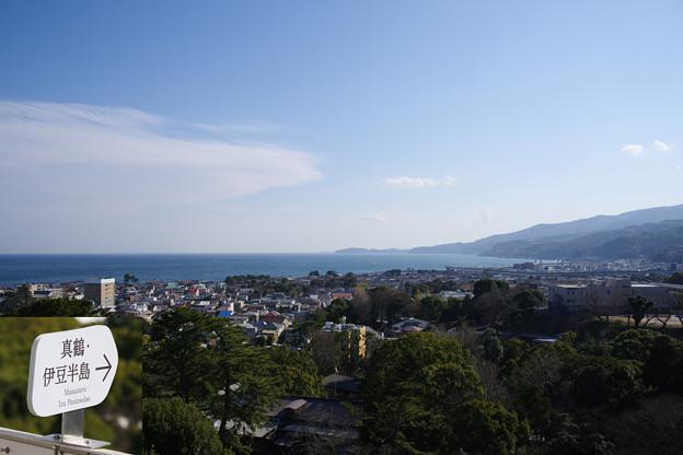 写真: 小田原城から伊豆方面