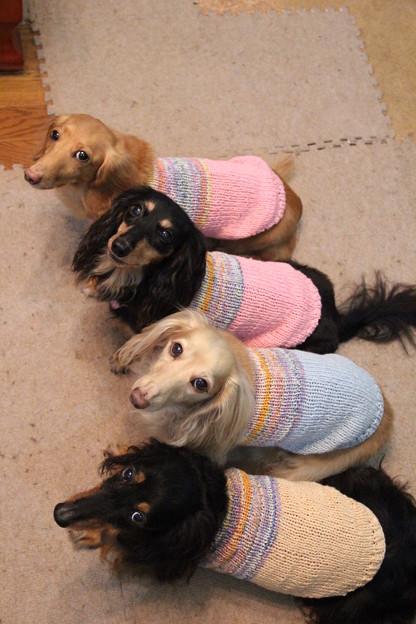 手編みのキャミソールだよ