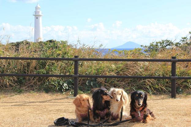 Photos: 爪木崎灯台をバックに