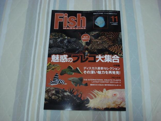 20111011 月刊誌フィッシュマガジン