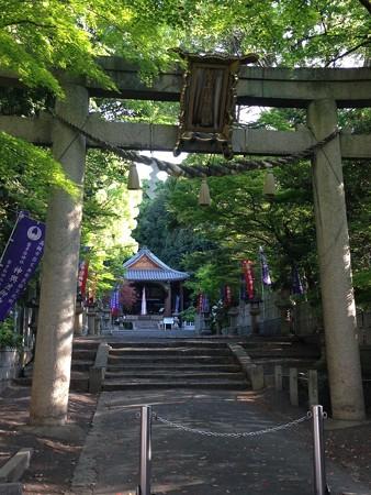 20150501 磐手杜神社