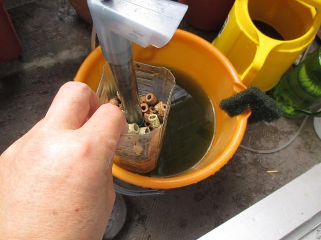 20160915 ベランダ水槽の手作りろ過掃除