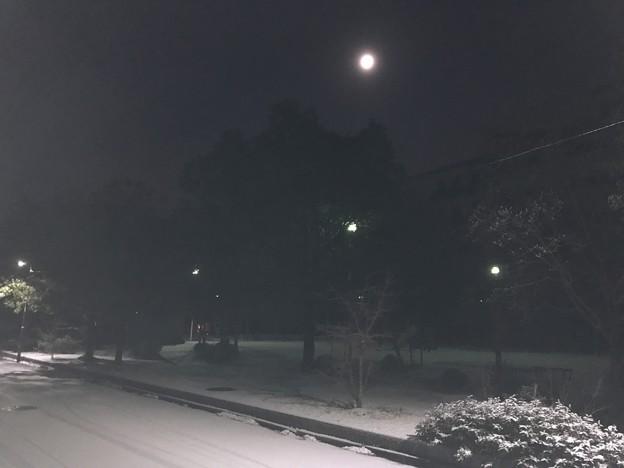 写真: 20170115 雪景色