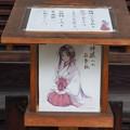 写真: 京都大神宮