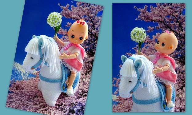 白馬に乗って
