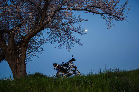月を望む。